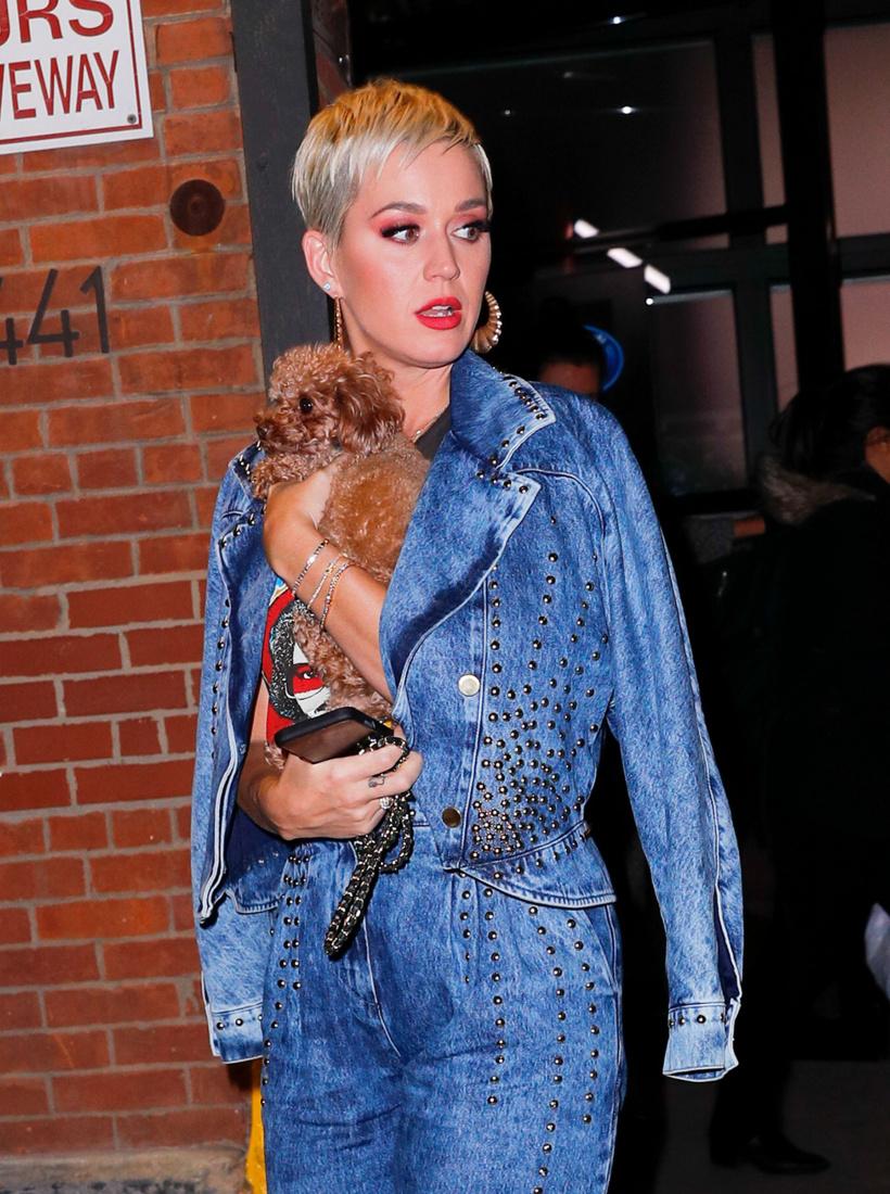 Katy-Perry-Nugget-.jpg