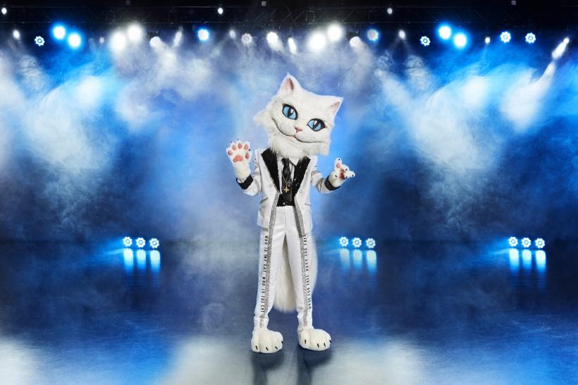 Katze-The-Masked-Singer.jpg