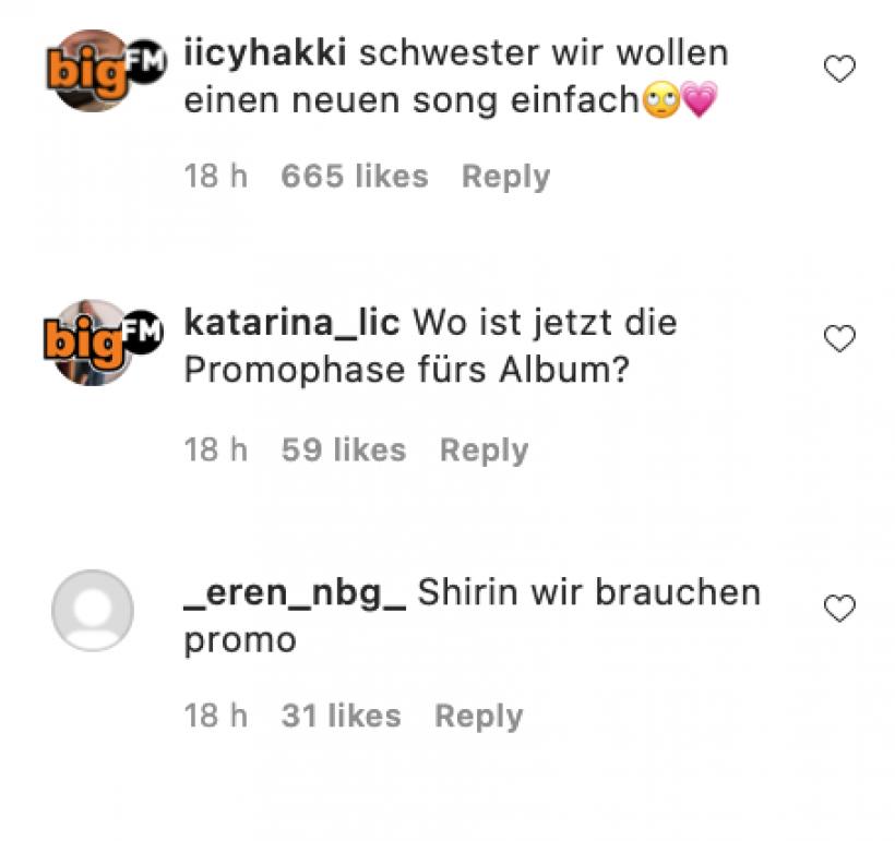 Screenshot-2021-09-21-Shirin-David-Kommentarfeld-Instagram.png
