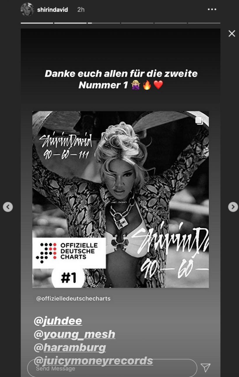 Shirin-David-Instagram-Story.png