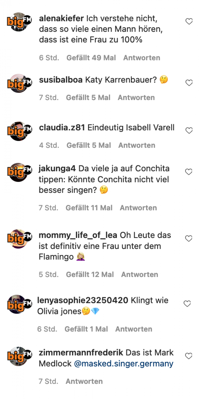 The-Masked-Singer-Flamingo-Andere-Meinungen.png