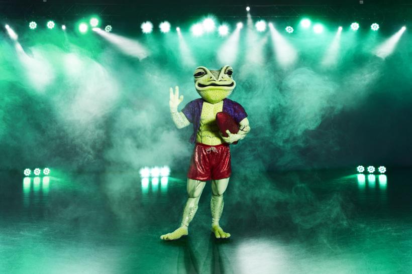 The-Masked-Singer-Frosch.jpg
