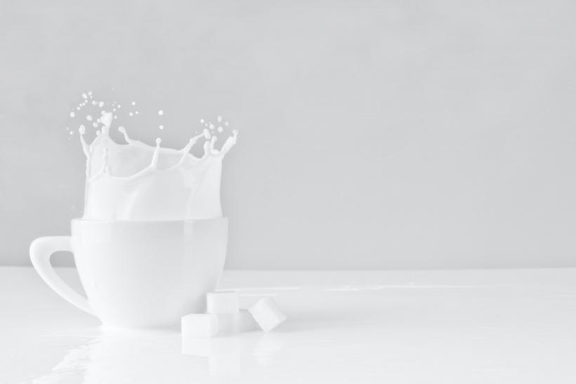 Die Kuh trinkt Milch? Nein - aber das lässt uns der Priming Effekt kurzzeitig glauben